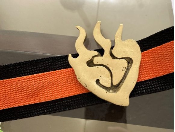 Finished, polished, brass buckle attached to the orange and black nylon webbed belt
